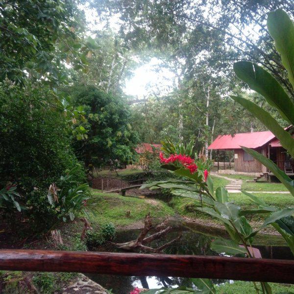 hôtel-palenque