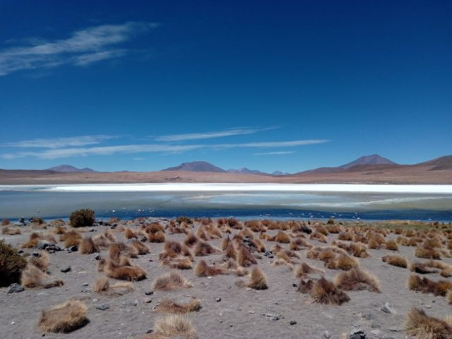 lagune-desert-bolivie